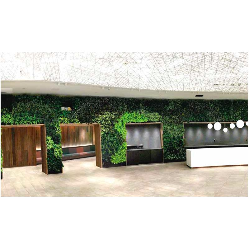 Mur végétal intérieur et extérieur. Pour une maison, un restaurant ou un établissement chic.